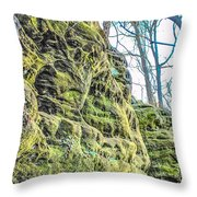 Nooks And Crannies Throw Pillow