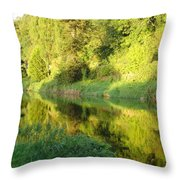 Nore Reflections II Throw Pillow