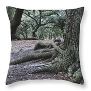 Norfolk Trees Throw Pillow