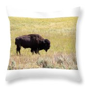North American Bison- Buffalo In Field  Throw Pillow
