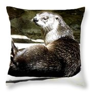 North American River Otter Throw Pillow