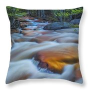 North Branch Rapid In Spring  Throw Pillow