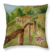 North Carolina Apple Orchard Throw Pillow