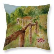 North Carolina Apple Orchard Throw Pillow