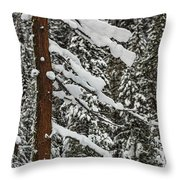 North Cascades Forest Throw Pillow