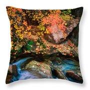 North Creek Fall Foliage Throw Pillow