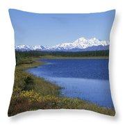 North Face Of Mount Mckinley, Lake Throw Pillow
