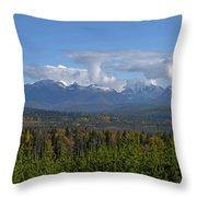 North Fork Autumn Throw Pillow