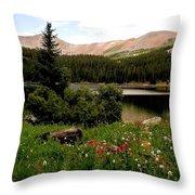North Fork  Lake Colorado Throw Pillow