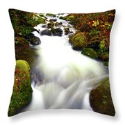 North Fork Of Wallace Throw Pillow