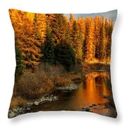 North Fork Yaak River Fall Colors #1 Throw Pillow