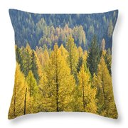 North Idaho Gold Throw Pillow