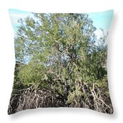 North Mountain4 Throw Pillow