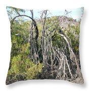 North Mountain7 Throw Pillow