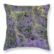 North Of Alaska From Space Throw Pillow