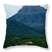 North Of Santa Fe Throw Pillow