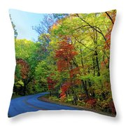 North Of The Folk Art Center In Fall Throw Pillow