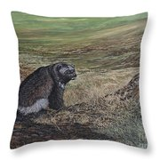 North Of The Utukok River Throw Pillow