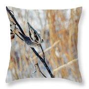 North Pond Prairie Grass Throw Pillow