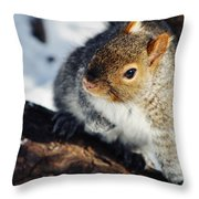 North Pond Squirrel Throw Pillow