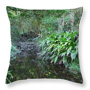 North Shore Forest Glade Throw Pillow