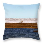 North Slope Throw Pillow