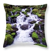 North Umpqua Wild And Scenic River Throw Pillow