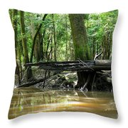 North West Florida Swamp Throw Pillow