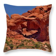North Window Throw Pillow