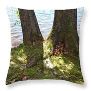 North Woods Lake One Throw Pillow
