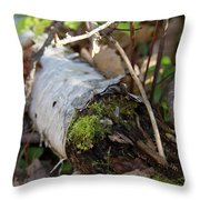 North Woods Mossy Birch Throw Pillow