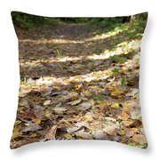 North Woods Path Throw Pillow