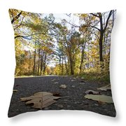 North Woods Road Two Throw Pillow