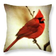 Northern Cardinal Throw Pillow