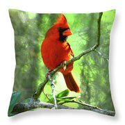 Northern Cardinal Proud Bird Throw Pillow