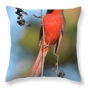 Northern Cardinal With Berry Throw Pillow