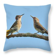 Northern Flickers Communicate Throw Pillow