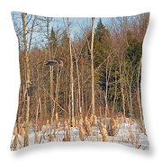 Northern Forests Ghost In-flight Throw Pillow