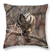 Northern Hawk Owl Having Lunch 9417 Throw Pillow