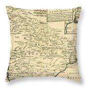 Northern India Throw Pillow