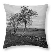 Northern Ireland 18 Throw Pillow
