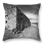Northern Ireland 31 Throw Pillow