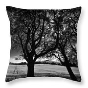 Northern Ireland 45 Throw Pillow