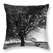 Northern Ireland 46 Throw Pillow