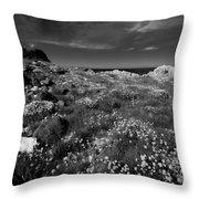 Northern Ireland 69 Throw Pillow