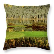 Northern Lake Throw Pillow