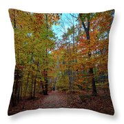 Northern Loop Trail Throw Pillow