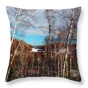 Northern Minnesota Throw Pillow