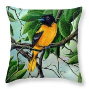 Northern Oriole Throw Pillow