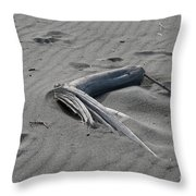 Northern Sands Throw Pillow